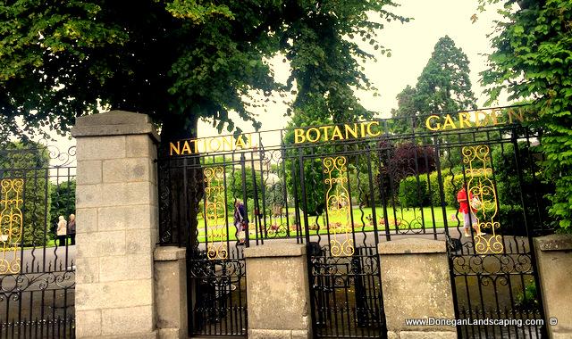 national botanic gardens dublin, peter donegan