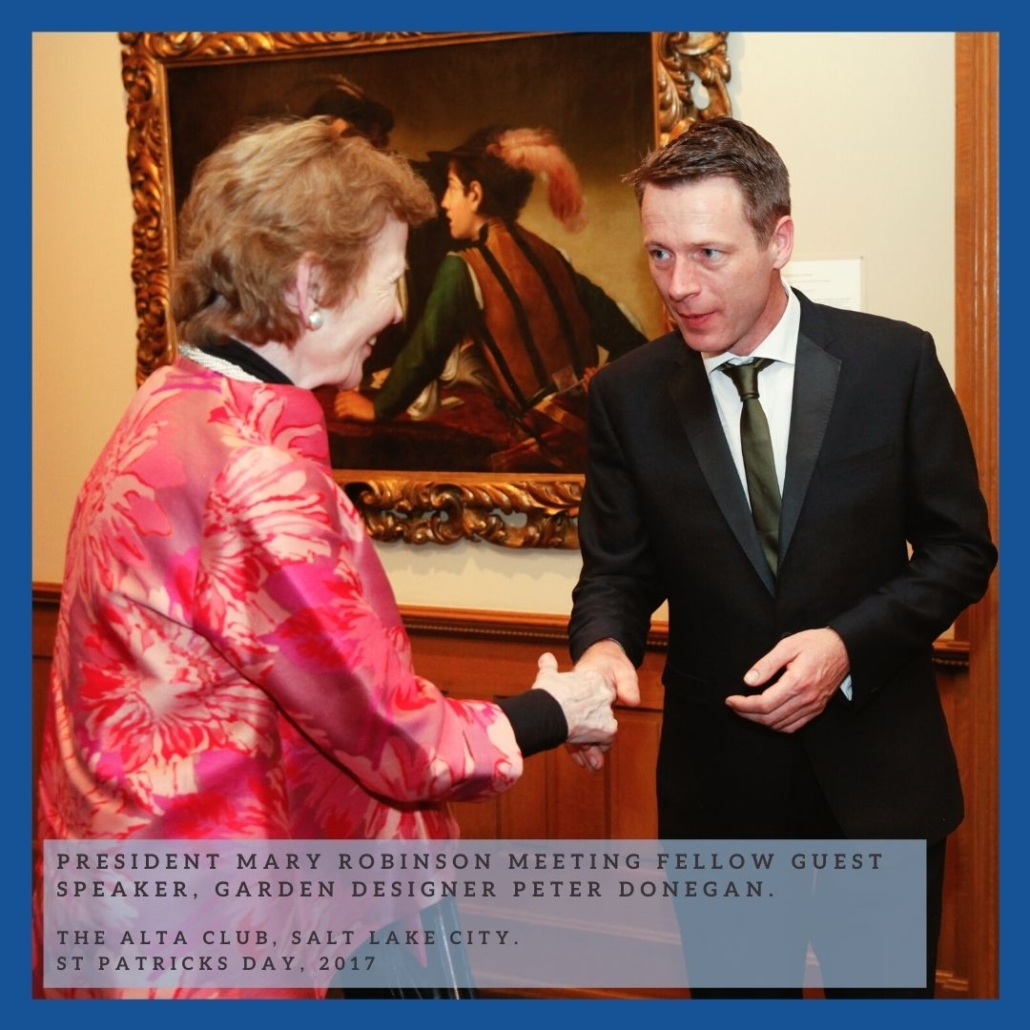 peter donegan president mary robinson